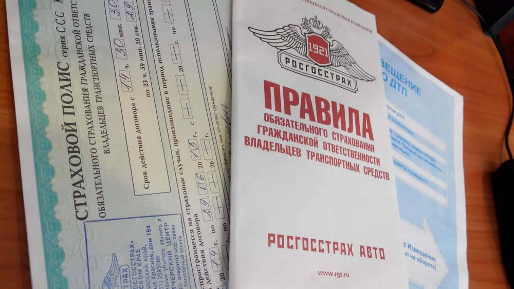 Куплю котенка новосибирск авито